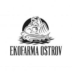 Logotyp &#8220;Ekofarma Ostrov&#8221;<br>(nerealizované)